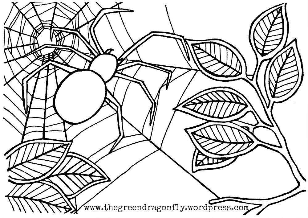 the very busy spider coloring pages az coloring pages