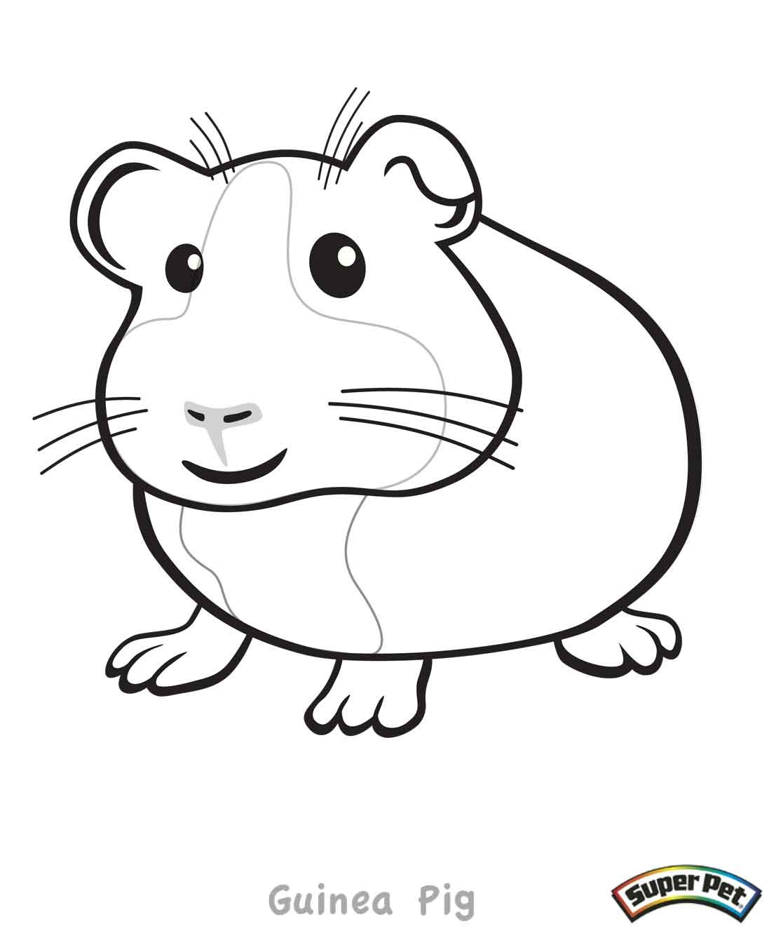 Guinea Pig Pages Coloring Pages