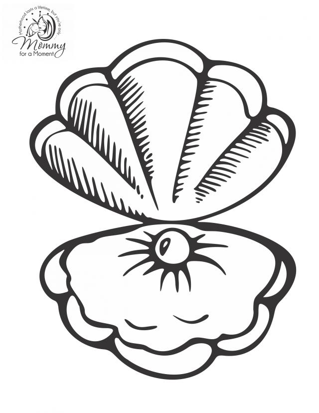 seashells coloring pages az coloring pages
