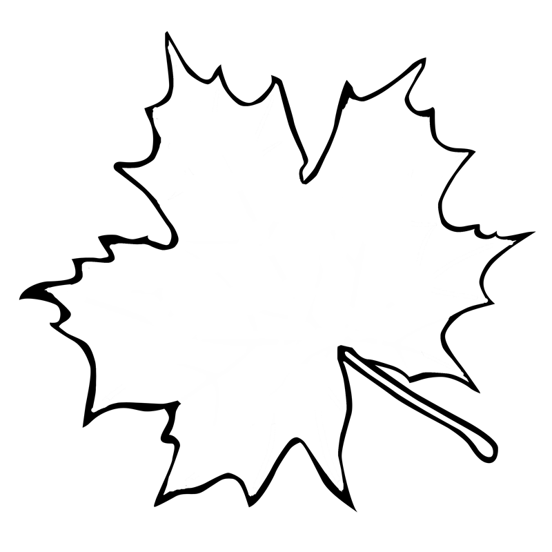print these maple leaf outline coloring pages for free maple leaf