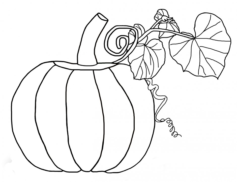 maple leaf coloring pages homeschool stuff pinterest 295875 leaf