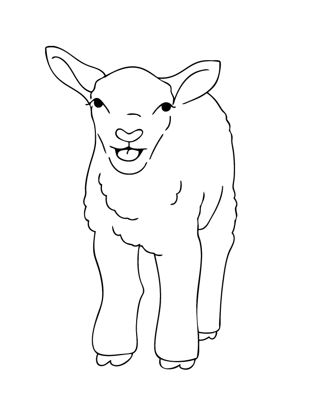 farm animal coloring page flock of lambs easter lamb colouring