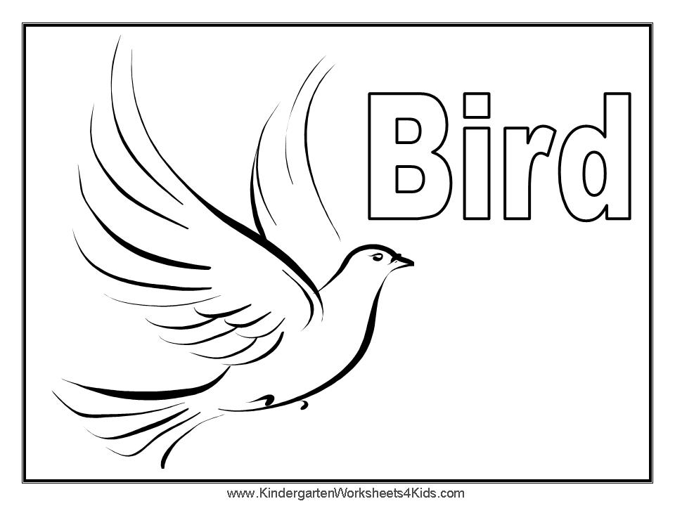 birds coloring pages printable coloring sheet anbu coloring