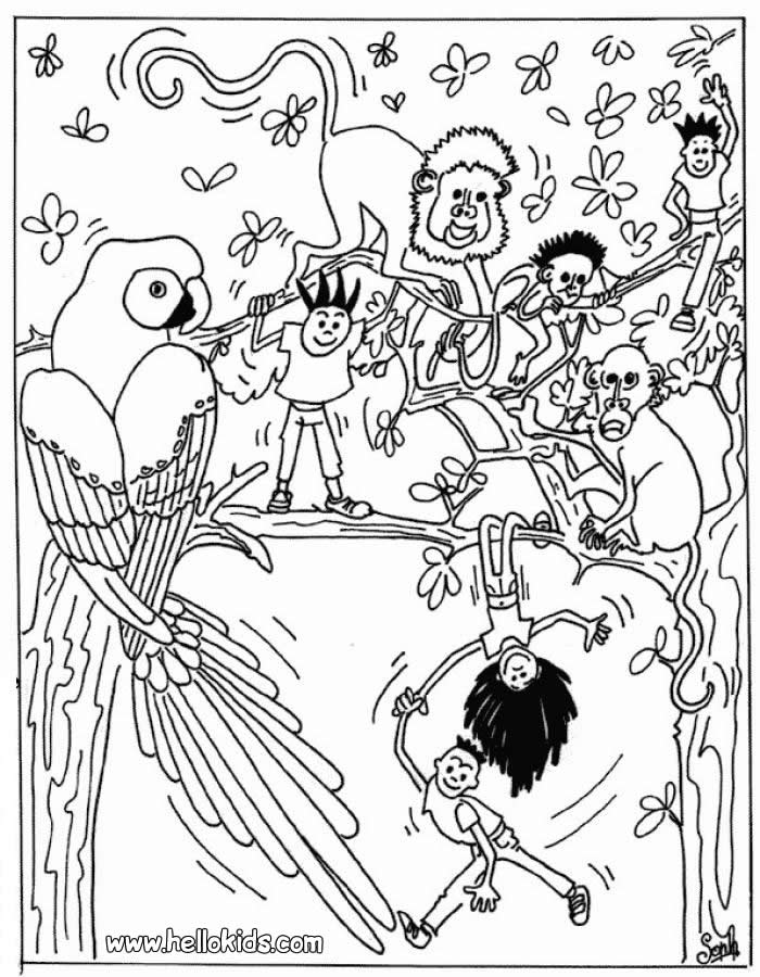 free wild animal coloring pages az coloring pages