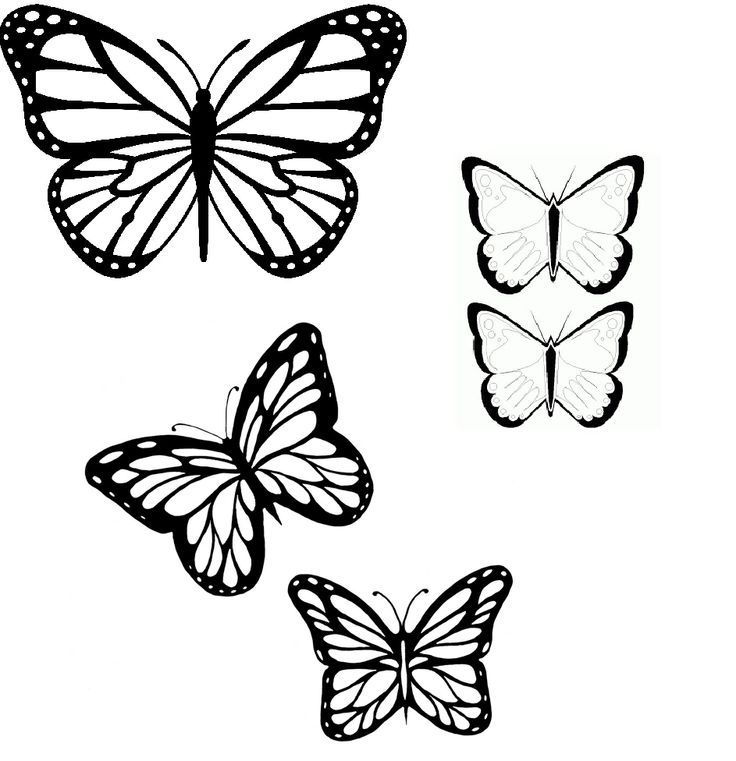 butterfly outlines az coloring pages