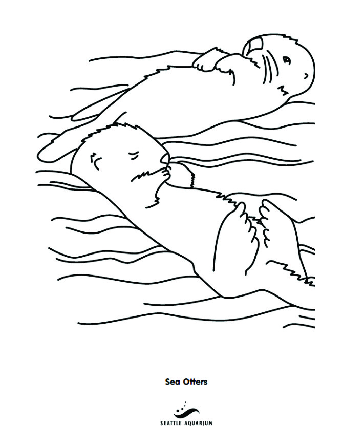 simple otter coloring pages