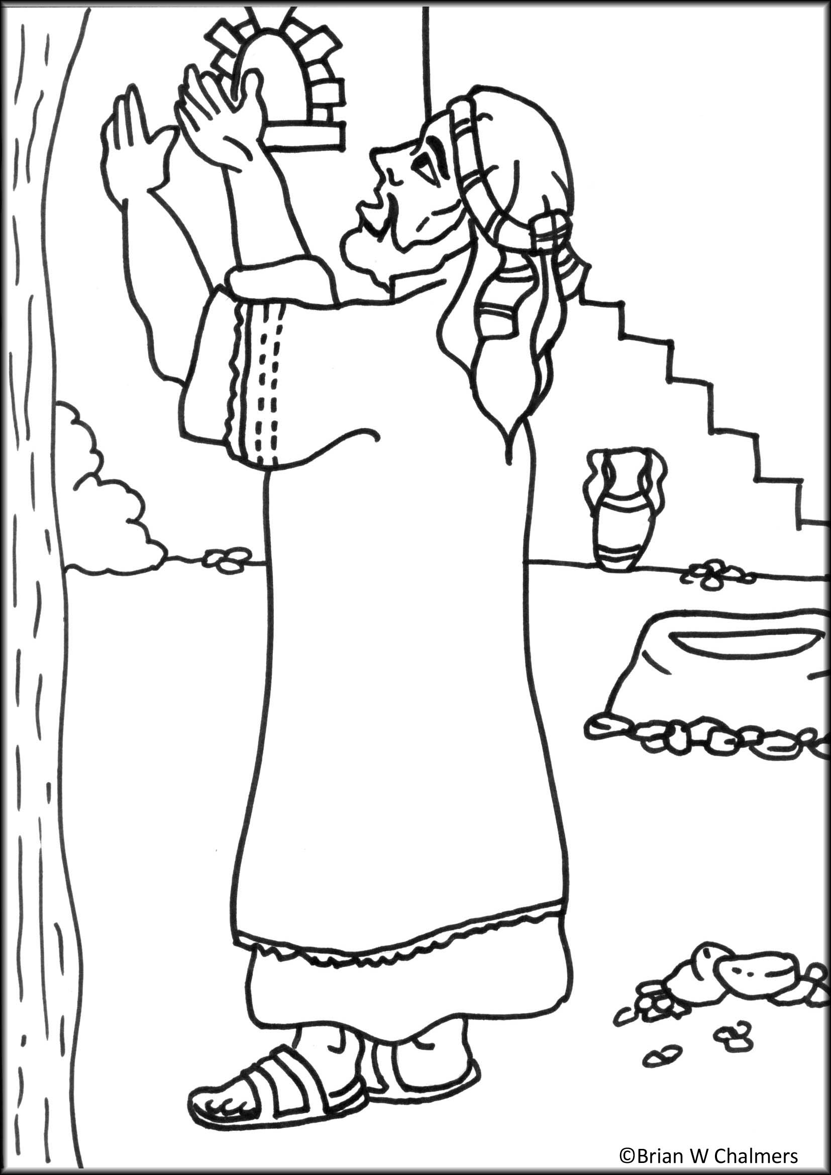 Zacchaeus Coloring Page Printable