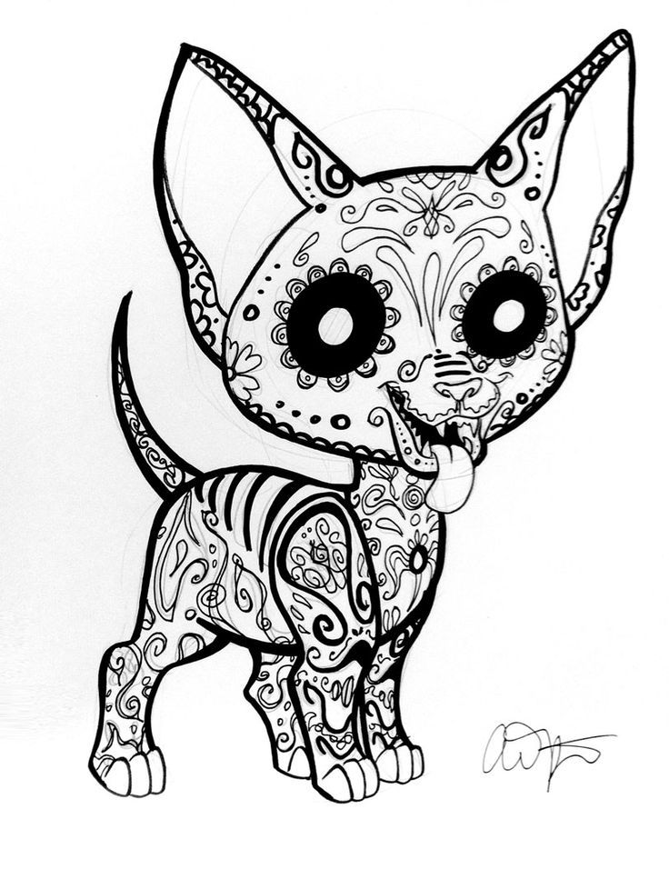 chihuahua coloring pages for kids az coloring pages
