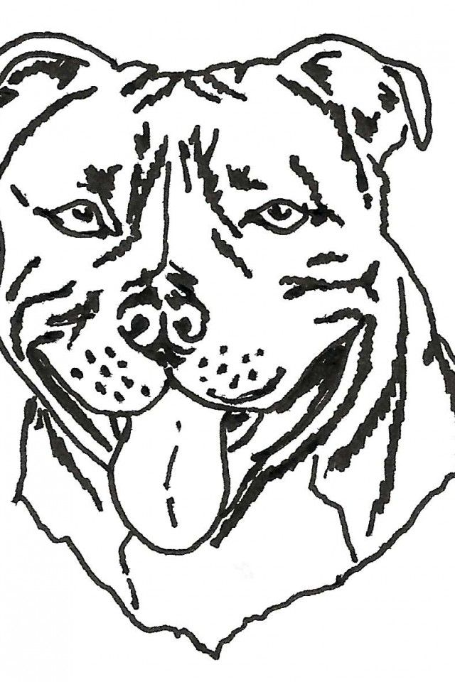dog breeds coloring pages az coloring pages
