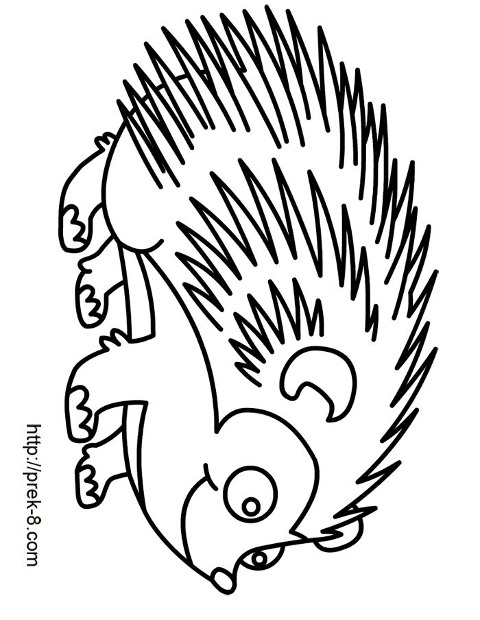 skunk coloring page cooloring com
