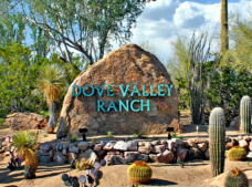 Dove_Valley_Ranch_-_azexcellenceteam