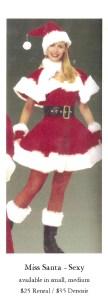 miss-santa-sexy_25