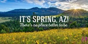 Image result for arizona spring time