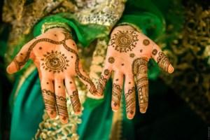 Portraits of hands