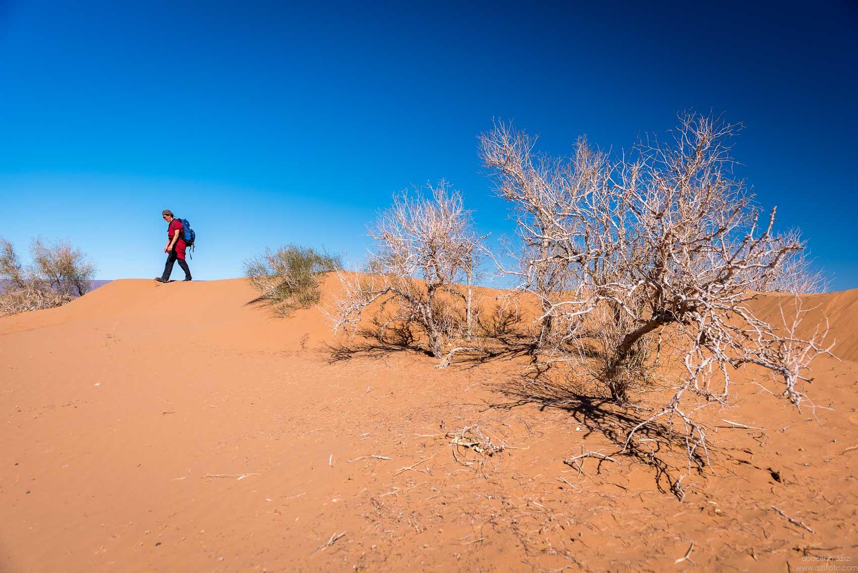 Ici dans desert Therapeutic Hiking, Morocco desert