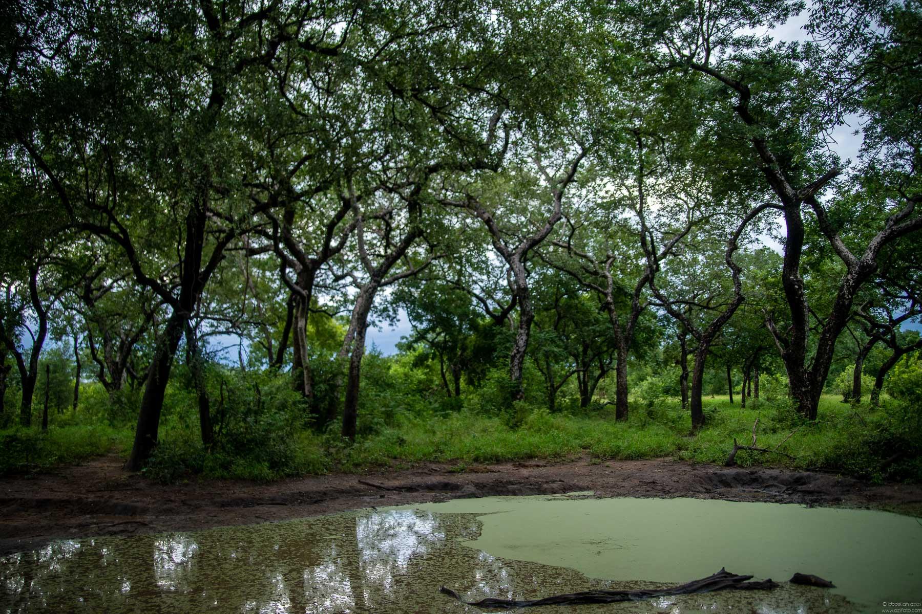 Majete reserve Malawi