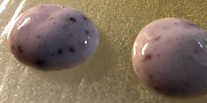 blueberry yogurt drops
