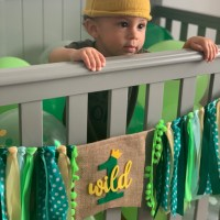 Celebrating Baby's First Birthday/Jungle Theme