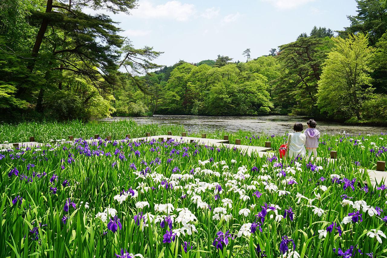 140517_Kobe_Municipal_Arboretum_Japan02bs