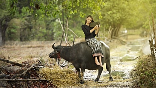 buriram-tajlandia-azja-po-zmroku