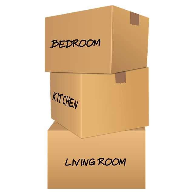 Labelled cardboard boxes you will have a lot when moving to Washington DC on a budget.