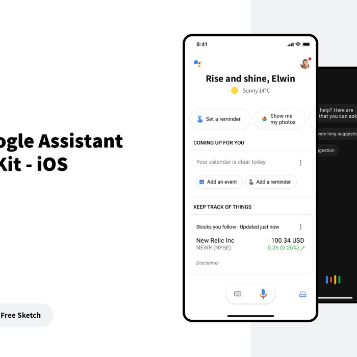 Google Assistant UI Kit for IOS