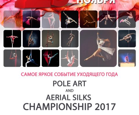 CHAMPIONSHIP «Pole Art and Aerial Silks 2017»