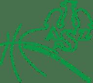 azs-uw-koszykowka-k-logo