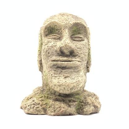 Easter Island rock face