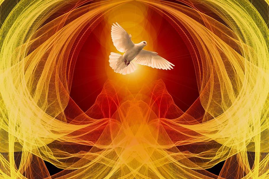 Dove & Wave Particles