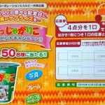 【終了】2016/12/2ライフコーポレーション&カルビー共同企画 デコじゃがりこプレゼントキャンペーン!!
