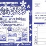 【終了】2017/4/30ライフコーポレーション×明治 春のカタログギフトプレゼントキャンペーン