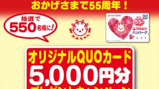 【終了】2017/11/20マルシンフーズ マルシンハンバーグ55周年 オリジナルQUOカード5000円分プレゼントキャンペーン