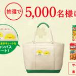【終了】2018/2/15丸美屋食品工業 家族の初夢キャンペーン マークで当たる!