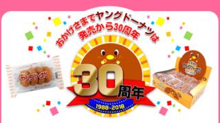 【終了】2018/12/31宮田製菓  ヤングドーナツ誕生30周年記念プレゼントキャンペーン