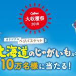 2018/11/9・11/16・12/8カルビー大収穫祭2018 オリジナルベジバスケットと北海道のじゃがいもが10万名様に当たる!