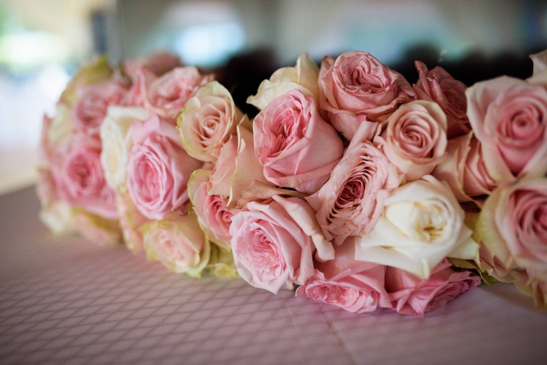 Antebellum Oaks Wedding - Austin Wedding Photographer - Jacob and Katie - hill country wedding - bundle pink and white roses for wedding