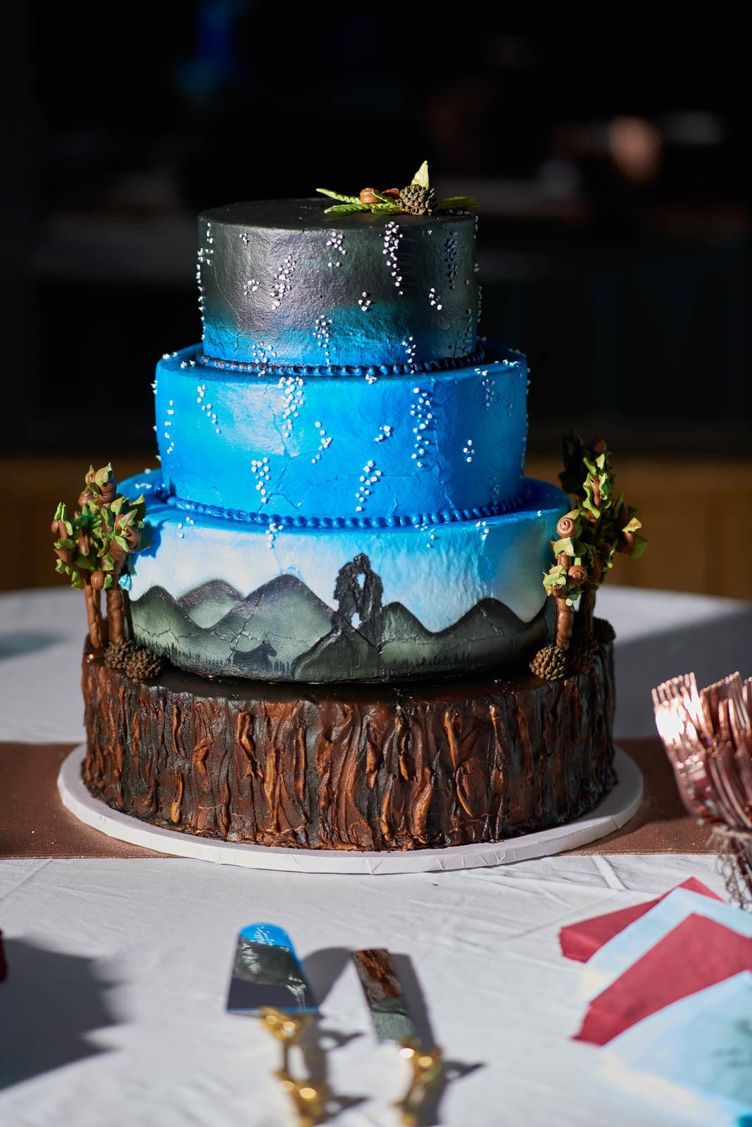 Featured Wedding Cakes- DIY Wedding Cakes - Cake Highlights - Austin Wedding Photographers - Hallie and Johathan Wedding -