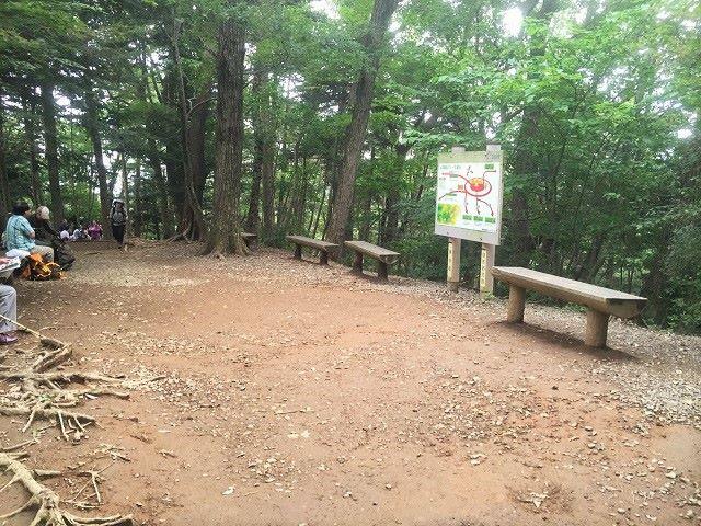 高尾山3号路休憩所ベンチ