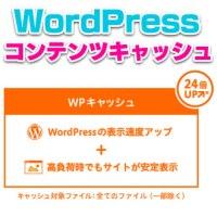 ワードプレス,wordpress,コンテンツキャッシュ,効果,ロリポップ