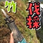 【マキタ】レシプロソーで竹を伐採!!