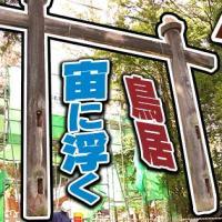 穂高神社,穂高,神社,解体,鳥居,とりい,安曇野,azumino,japan,むね工房
