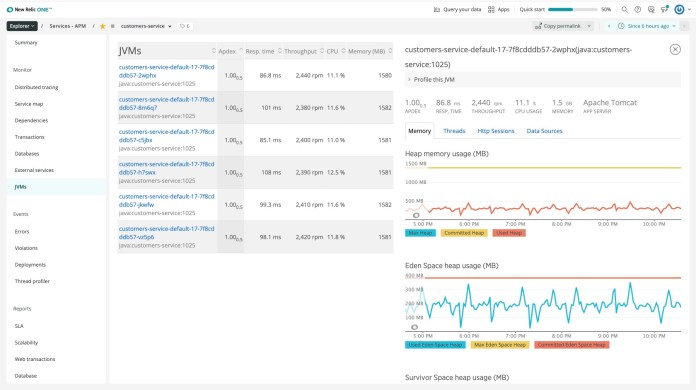 Screenshot 3 - shows how many JVMs there are for all customer service application instances.