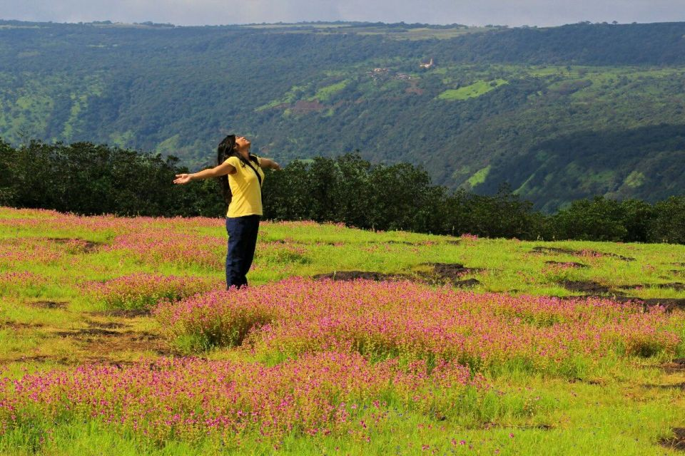 233 Kas Pathar Satara - Maharashtra - India - Mumbai daytrip - Mumbai Weekend - Satara - Unesco - Valley of flowers - Travel - Azure Sky Follows