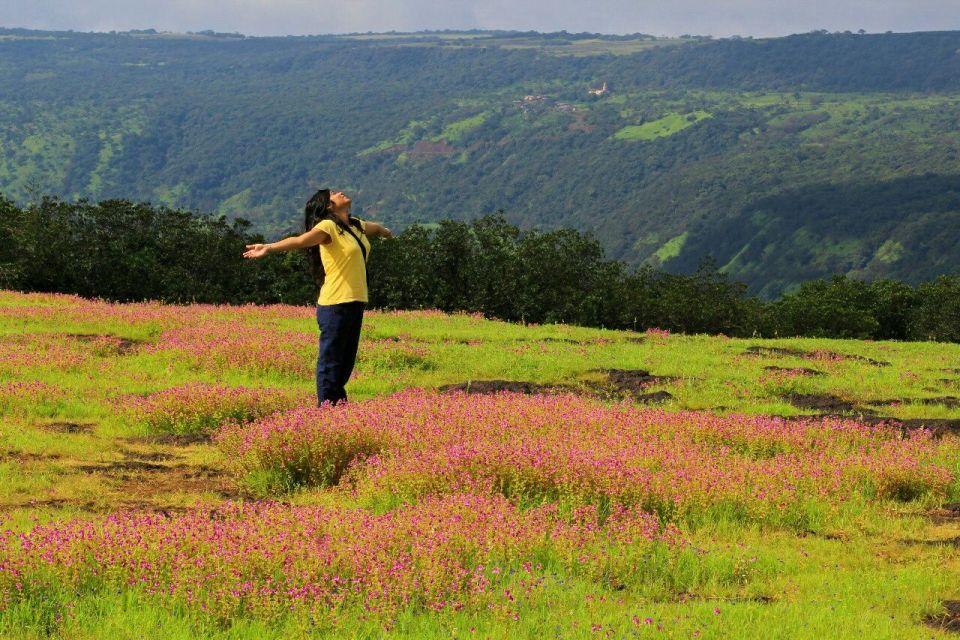 233 Kaas Pathar - Maharashtra - India - Mumbai daytrip - Mumbai Weekend - Satara - Unesco - Valley of flowers - Travel - Azure Sky Follows