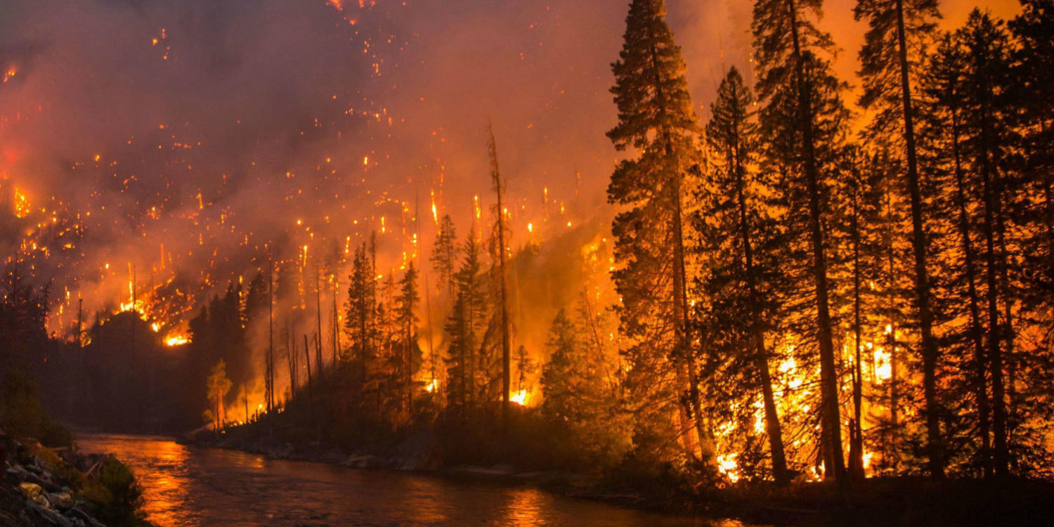 Wild Fire, False Fire and the Holy Fire: Why I left the prophetic movement once and for all