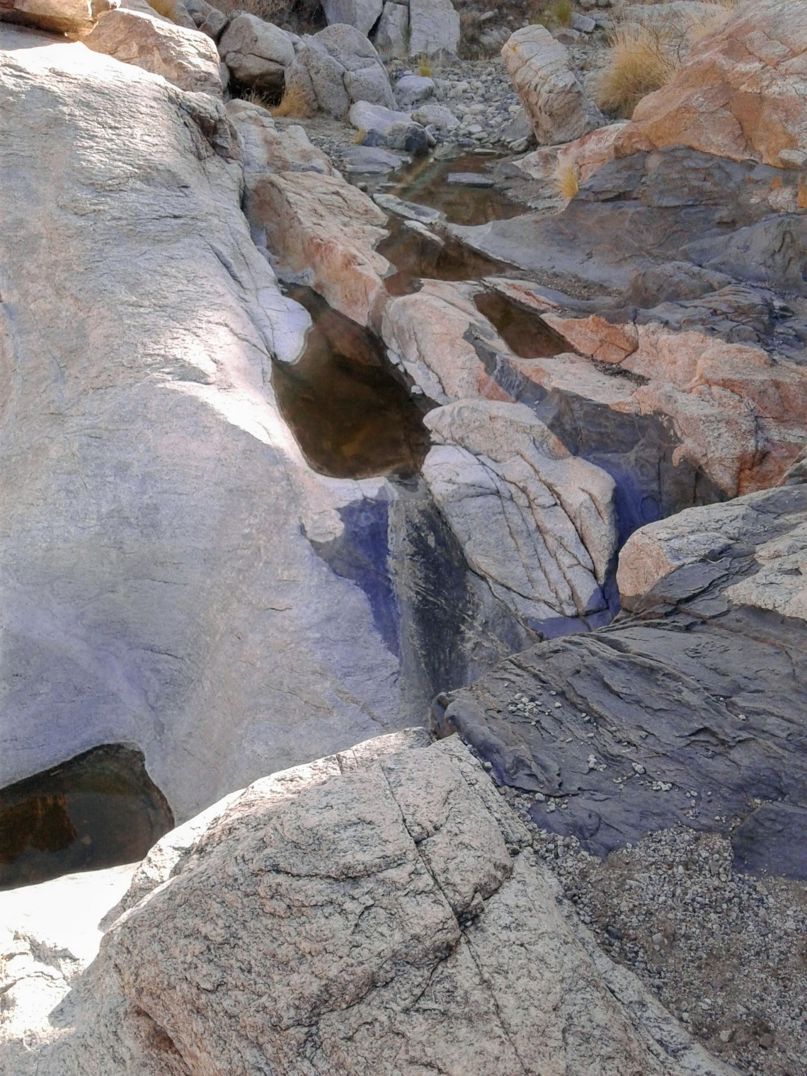 pools of rainwater trapped in rocks