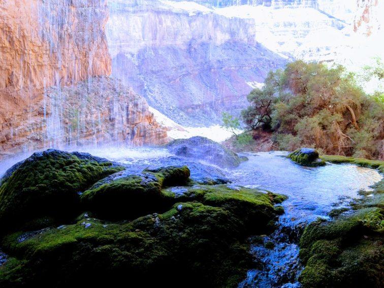 View of Grand Canyon from behind Ribbon Falls
