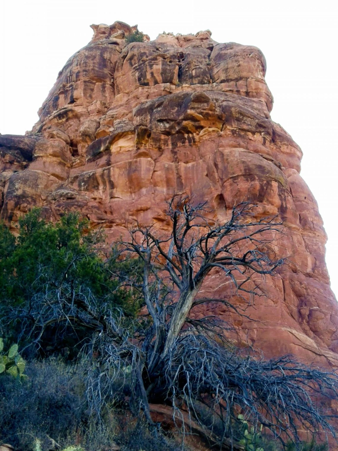 Tower of red rock rises above Bell Trail