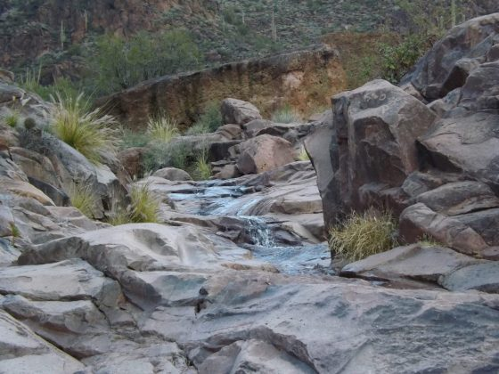 Water trickles over rocks with petroglyphs on Hieroglyphic Trail
